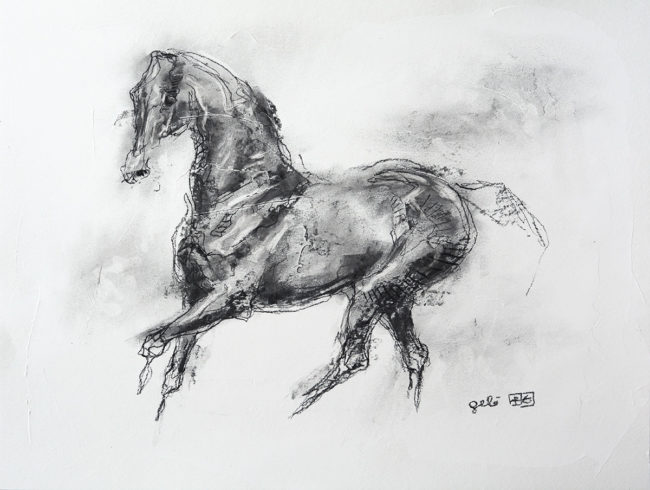 Equine Nude 4p