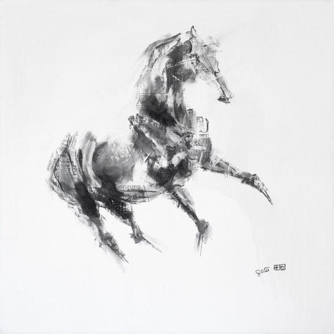 Equine Nude 5p