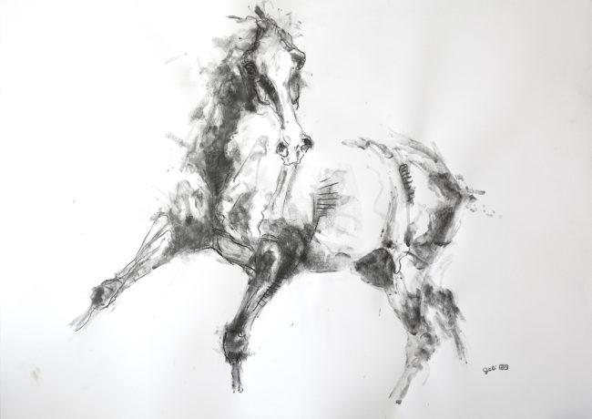 Equine Nude 9p