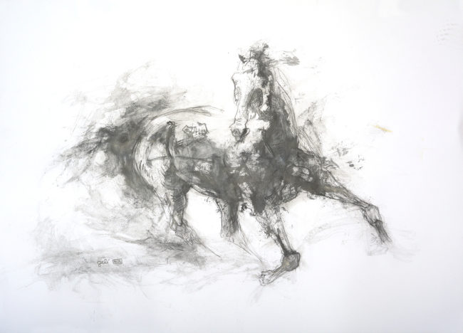 Equine Nude 11p