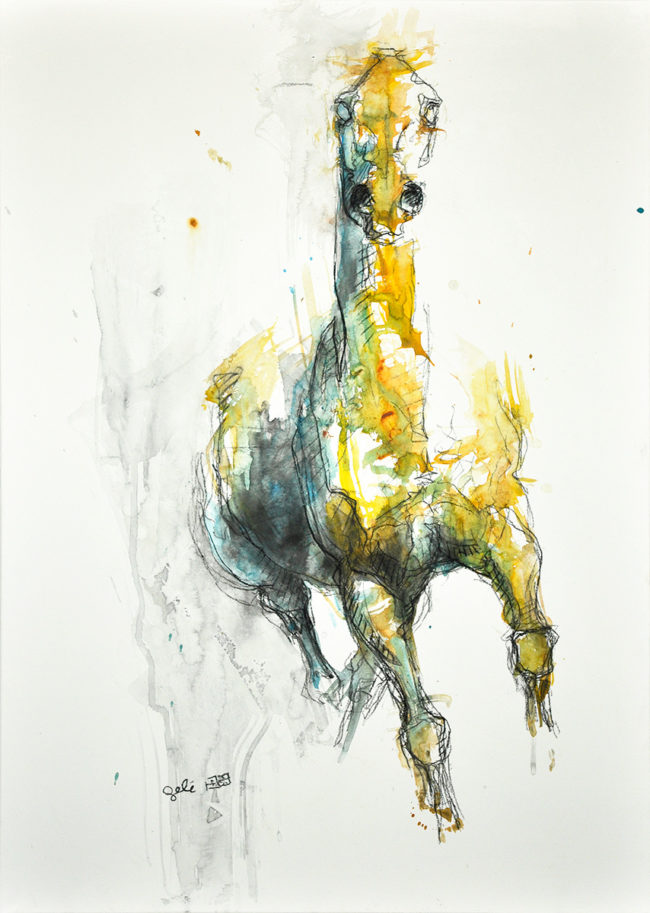 Equine Nude 53t