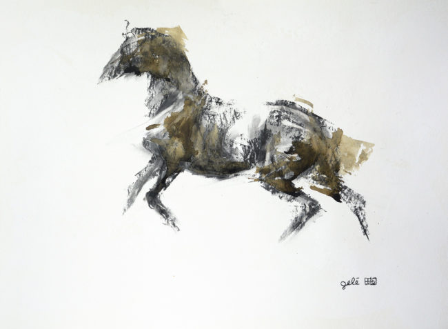 Equine Nude 84t