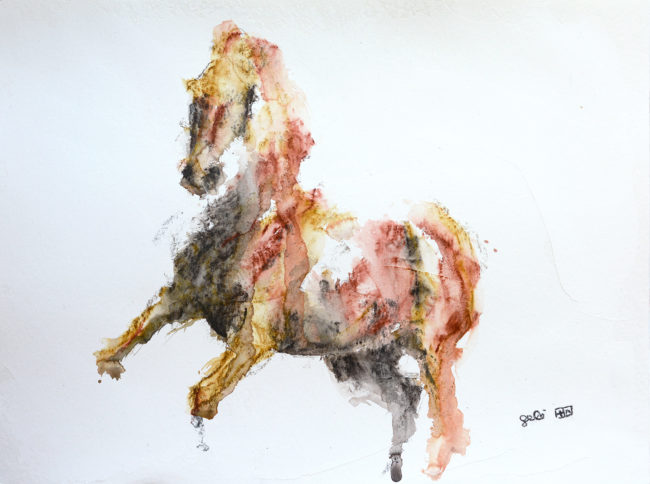 Equine Nude 92t