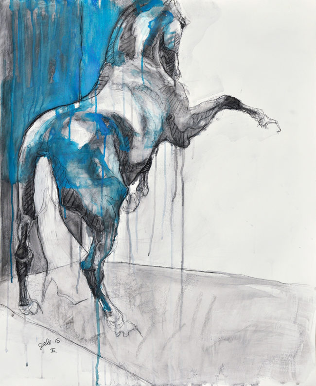 Equine Nude 11t