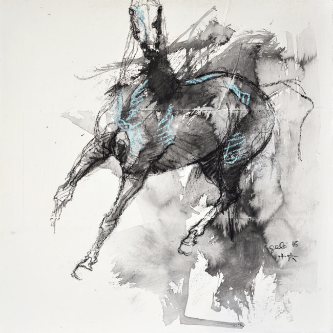Equine Nude 22t