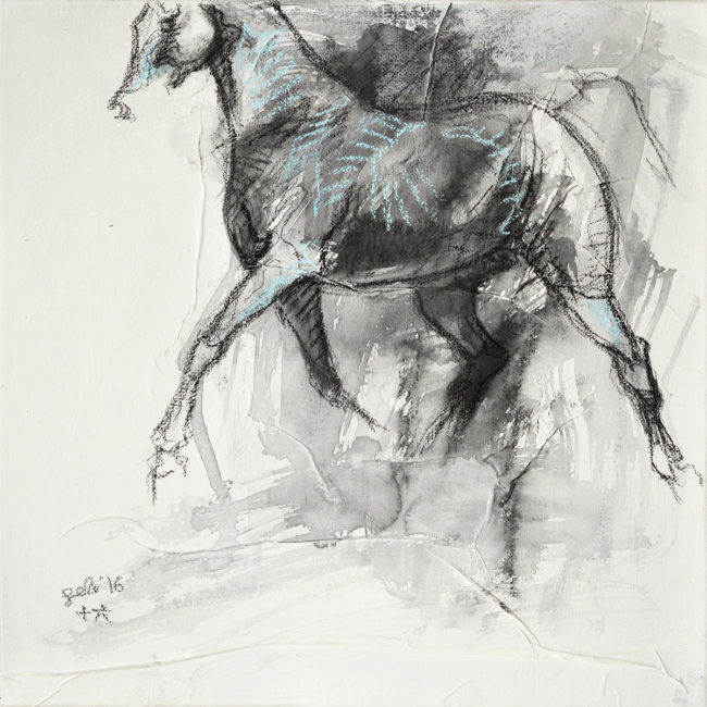 Equine Nude 23t