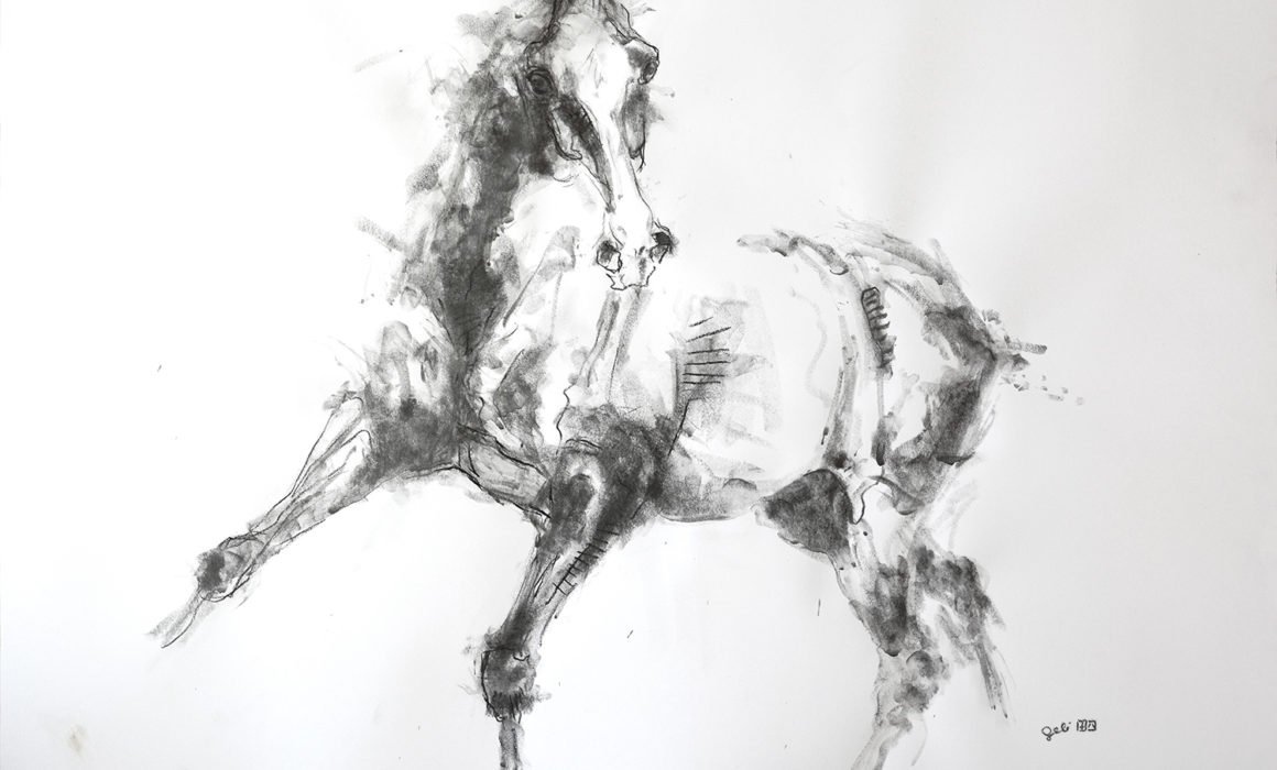 Equine Nude 9P drawing on paper